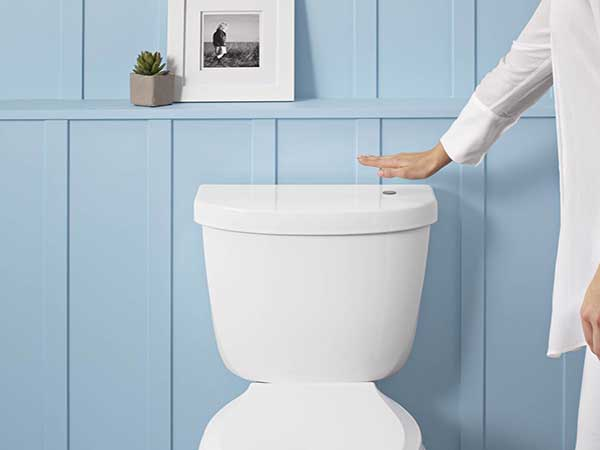 Kohler Touchless Flush